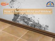 How to Remove Mold and Mildew at Your Home?