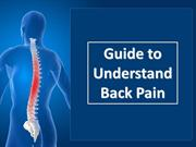 Guide to Understand Back Pain