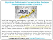 Significant Guidelines to Choose Business Development Consultant