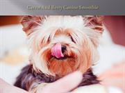 Carrot And Berry Canine Smoothie
