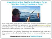 Unearthing the Best Bay Fishing Tricks to Try on Your Next Fishing Exp