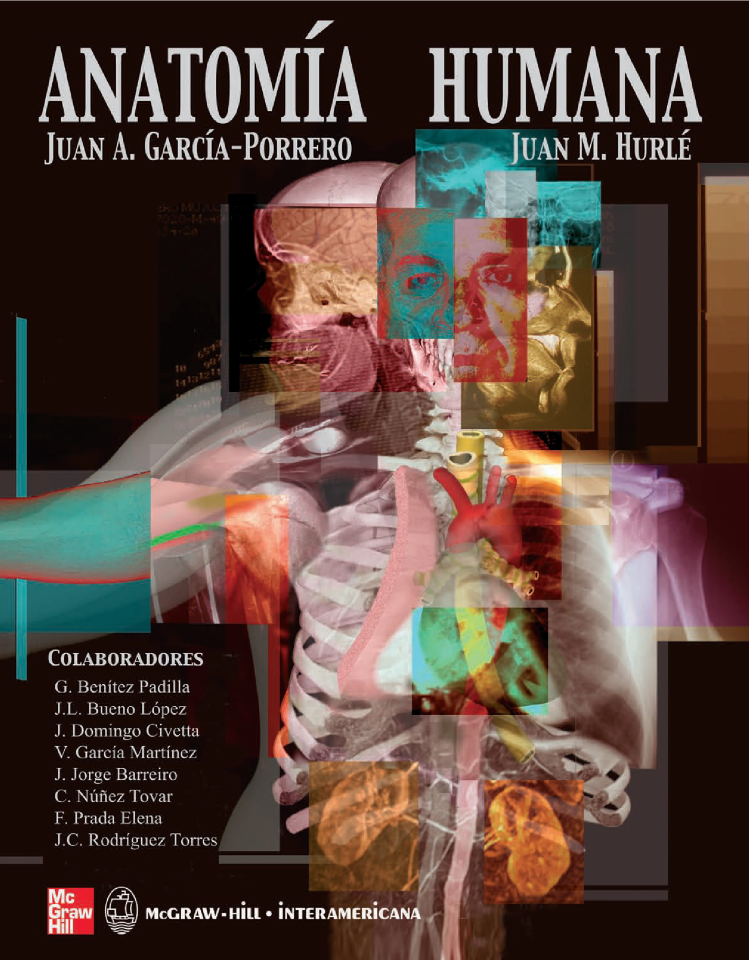 Anatomia Humana |authorSTREAM