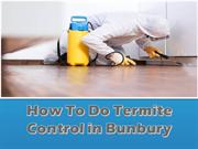 How To Do Termite Control in Bunbury