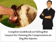 Complete Guidebook on NJ Dog Bite Lawyers for Claiming the Compensatio
