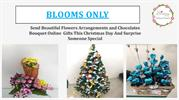 Christmas Flower Delivery Online in Pune – Blooms Only