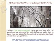 4 Different Tasks That A Tree Service Company
