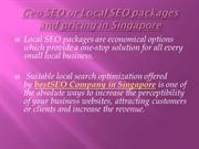 Web Developer Singapore , SEO Services Agency Pricing