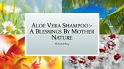Aloe Vera Shampoo A Blessings By Mother Nature
