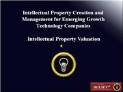 12-Intellectual Property Valuation