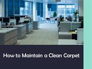 How to Maintain a Clean Carpet?