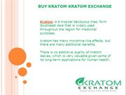 yBuy Kratom Kratom Exchange | Kratom Exchange