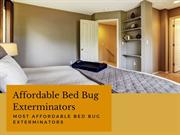 Best Treatment Options to get Rid of Bed Bugs