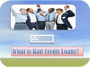 What is Bad Credit Loans