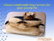 How to Choose Comfortable Dog Carriersfor your Lovely Pet