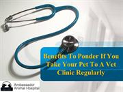 Benefits To Ponder If You Take Your Pet To A Vet Clinic Regularly