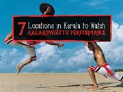 7-Locations-in-Kerala-to-Watch-Kalaripayattu-Performance