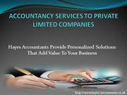 ACCOUNTANCY SERVICES TO PRIVATE LIMITED COMPANIES