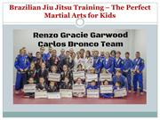 Brazilian Jiu Jitsu Training – The Perfect Martial Arts for Kids