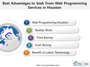Best Advantages to Seek From Web Programming Services in Houston