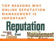 What is the Work of Online Reputation Management Company