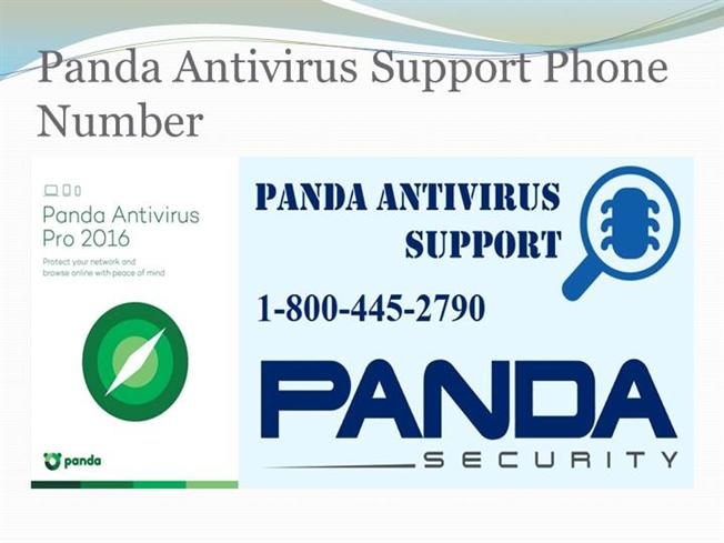Panda support phone number