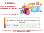 Top 5 Reasons Why eCommerce website is so important For your Business