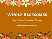 Find the Top Quality Carnations in Bulk