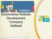 Ecommerce Websites Development Company Delhi