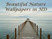 Beautiful Nature Wallpapers in HD