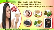 Herbal Hair Oil to Prevent Hair Loss, Balding Naturally At Home
