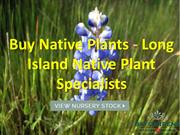 Our Top 10 Native Plants - Long Island Native Plant Specialists