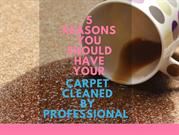 5 Reasons You Should Have Your Carpet Cleaned by a Professional