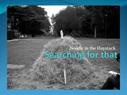 Searching for that needle in the haystack
