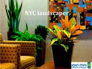 NYC Landscaper - Add Value to Your Homes