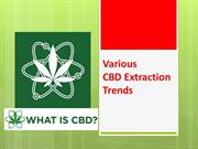 Various CBD Extraction Trends