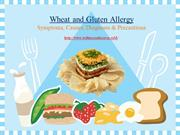Wheat and Gluten Allergy Symptoms, Causes, Diagnosis & Precautions