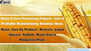 Maize & Corn Processing Projects