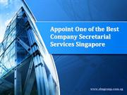 Appoint One of the Best Company Secretarial Services Singapore