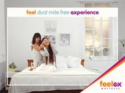 When it Comes to Best Mattress Brands, Feelex is at The Top.