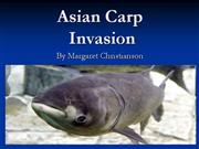 Asian Carp Invasion