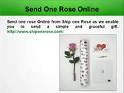 Buy Single Rose Online