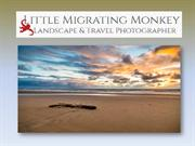 Amazing the world best Landscape photography- Little Migrating