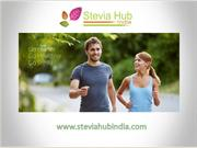 Stevia Manufacturers and Suppliers in India