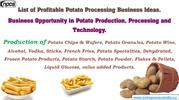 List of Profitable Potato Processing Business Ideas.