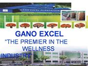 GANO EXCEL Presentation 2010