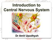 CNS 1 Introduction