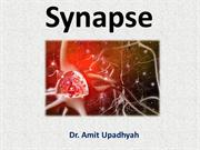 CNS 2 Synapse &  Neurotransmitter