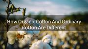 Here Is How Organic Cotton And Ordinary Cotton Are Different