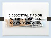 3 Essential Tips on Working Under a Co-Working Area