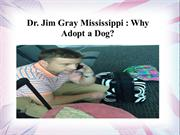 Dr. Jim Gray Mississippi - Why Adopt a Dog